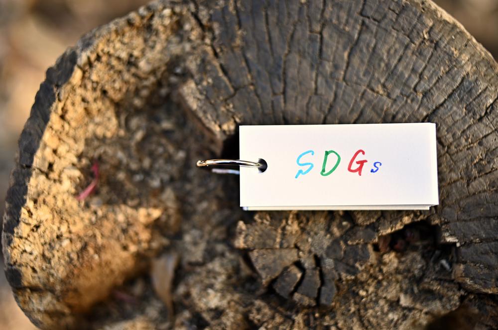 は エスディー ジーズ と SDGs(エスディージーズ)とは? 17の目標と達成すべき理由を解説(3分で分かるSDGs)
